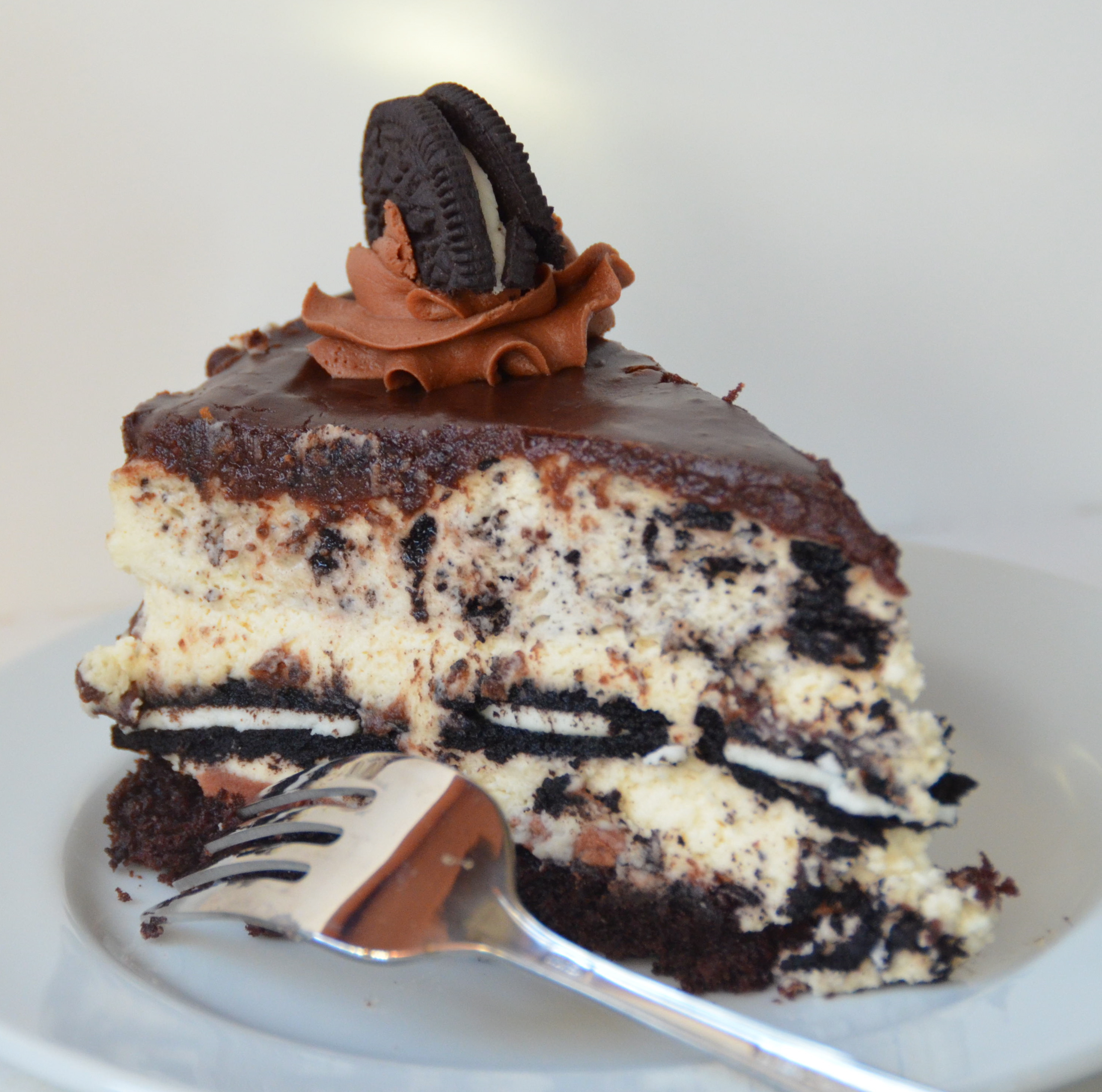 chocolate chocolate chip cheesecake chocolate cheesecake chocolate ...