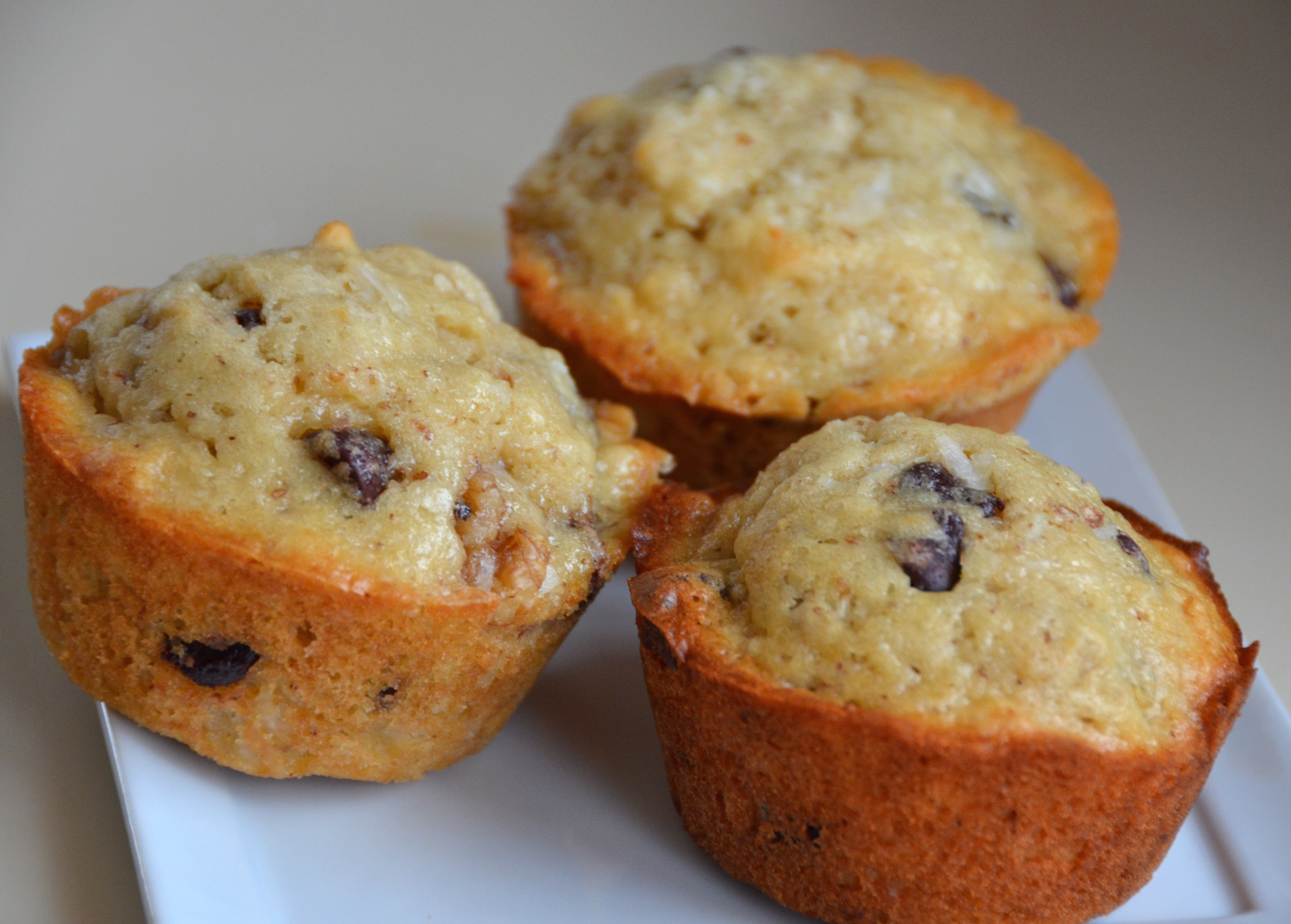 Coconut Chocolate Chip Muffins. New Music From Maya Kern. | I Sing In ...