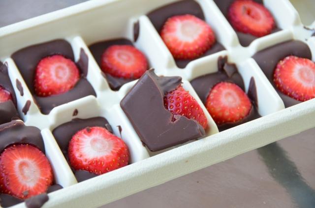 Ice Tray Chocolate Covered Strawberries