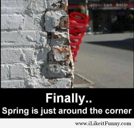 Funny-spring-2014-joke