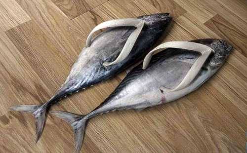 fishy-sandals