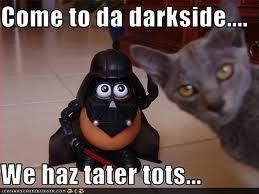 Image result for tater tot meme