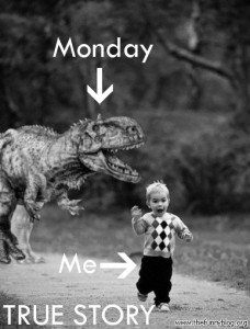funny-monday-picture-me-monday-true-story-228x300