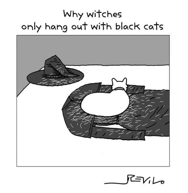 Black cats and withches