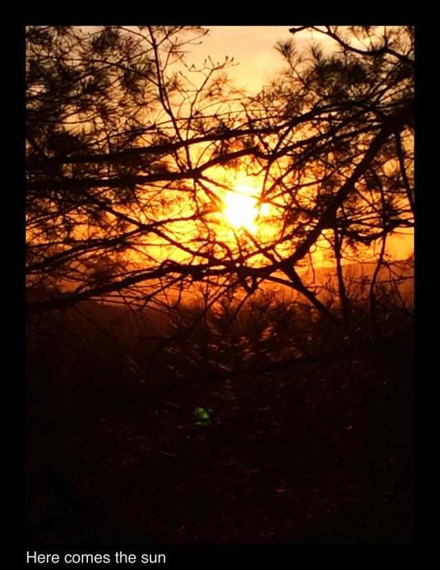 JPEG image-8964AF59CD5D-13