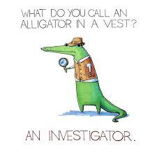 aliigator-in-vest