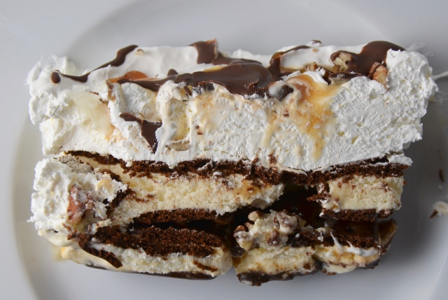 Turtle Ice Cream Sandwich Cake